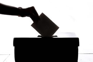 Elections and How They Work, Part One: The Board of Directors